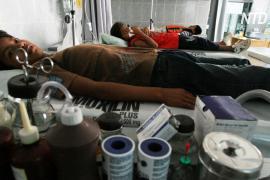 В Боливии пытаются остановить эпидемию лихорадки денге