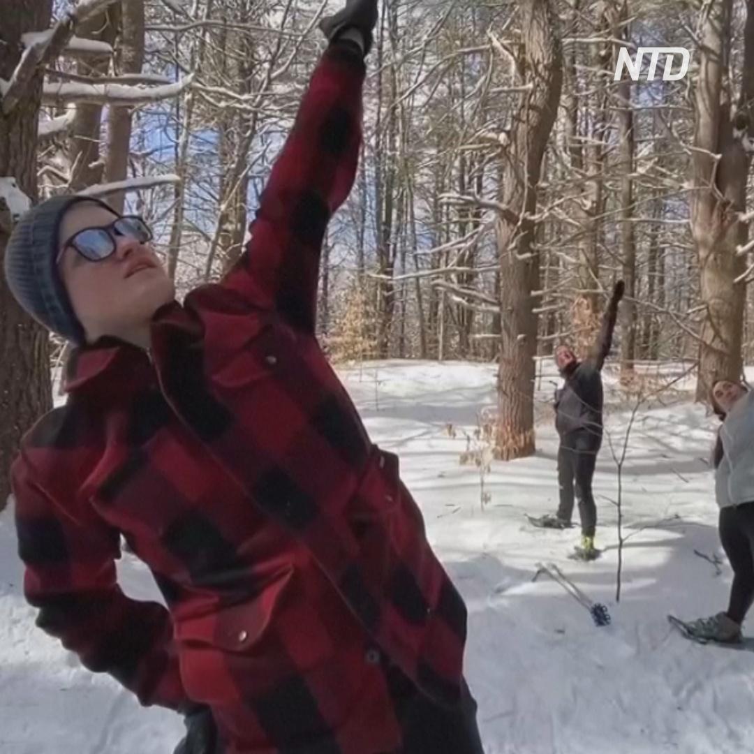 Американцы выбираются в лес и занимаются йогой прямо в снегоступах