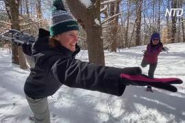 Йога и снегоступы: американцы выбираются в лес, чтобы снять стресс