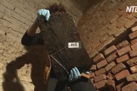 Самое древнее деревянное сооружение людей раскопали в Чехии