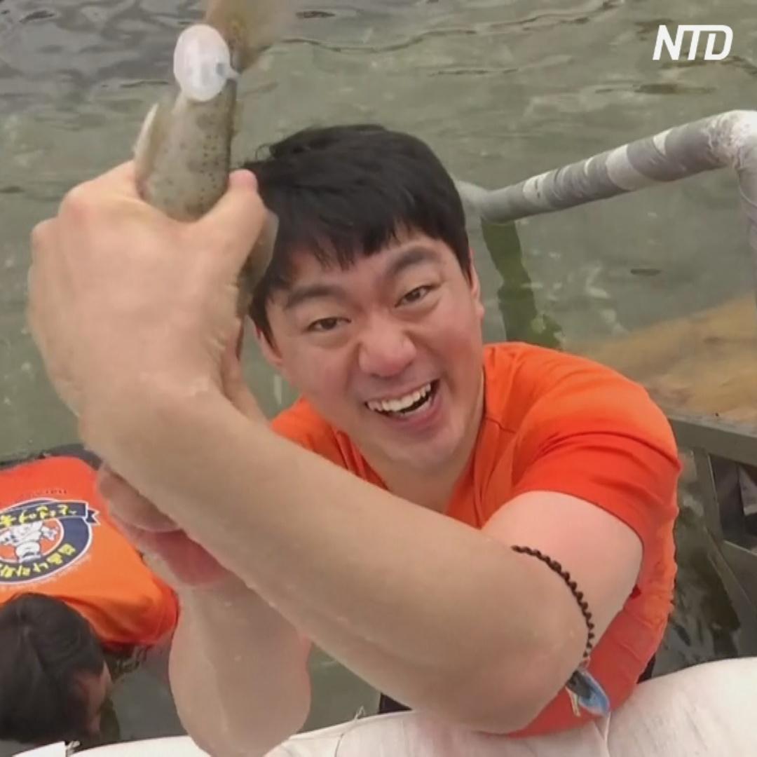 В Южной Корее рыбу ловили голыми руками на ежегодном фестивале