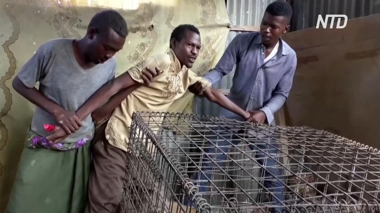 Сомалийцы лечат депрессию гиенами