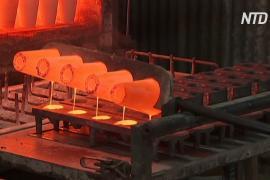 Австралийский городок хочет возродить добычу золота, но мешают летучие мыши