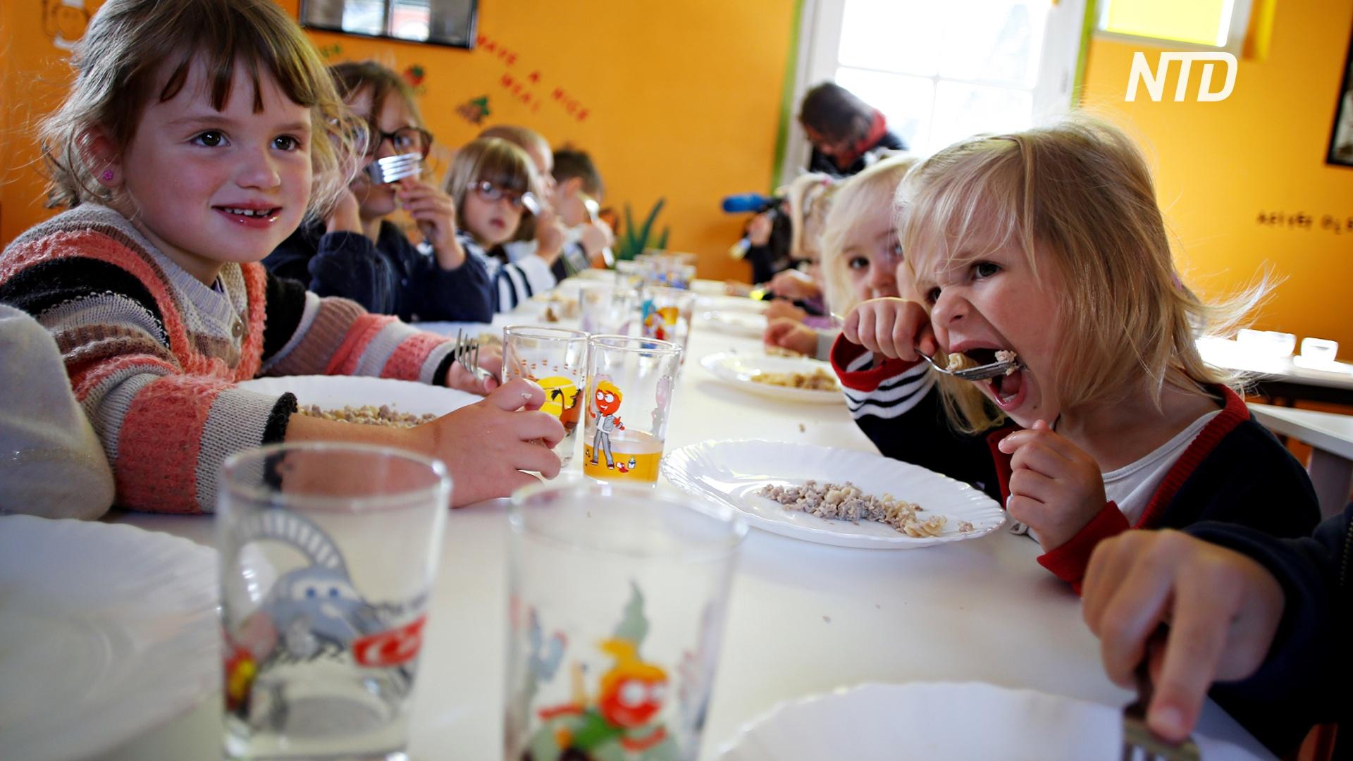 В Австралии школьная столовая отказалась от одноразового пластика