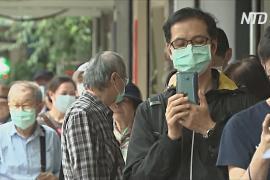 На Тайване разработали приложение по поиску масок для лица