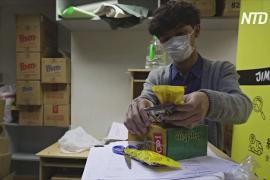 Гонконгские волонтёры помогают заключённым активистам