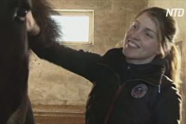 Доброта в условиях карантина: застрявшему цирку помогают жители Риги