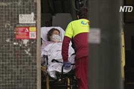 Коронавирус в Испании: 539 смертей за сутки