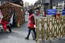 Тестов нет – выехать нельзя: как в Китае снимают карантин