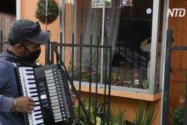 Чилиец каждый день играет вальсы перед окнами самозолировавшихся родителей