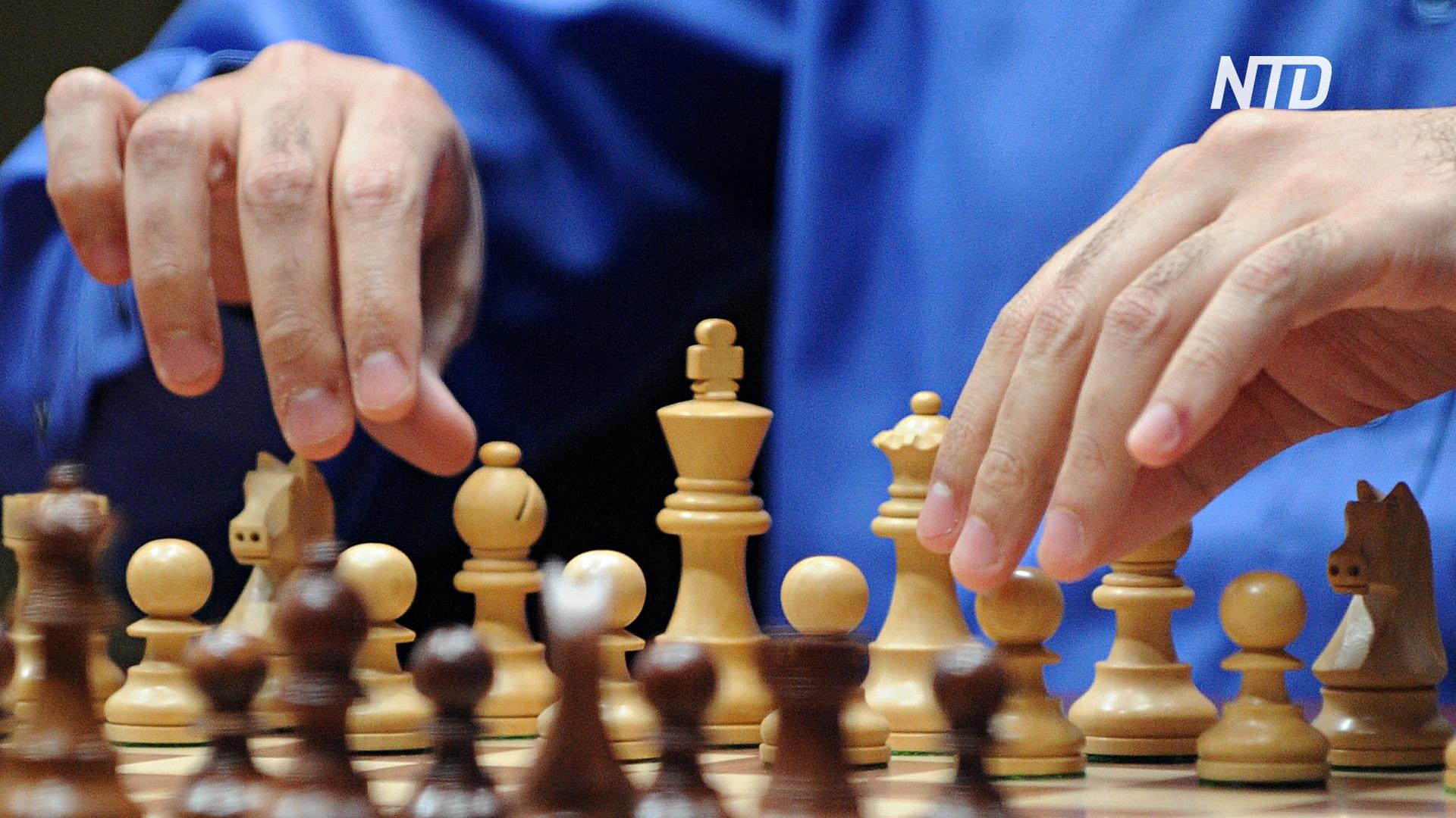 ФИДЕ приостановила шахматный турнир в России из-за отмены авиасообщения