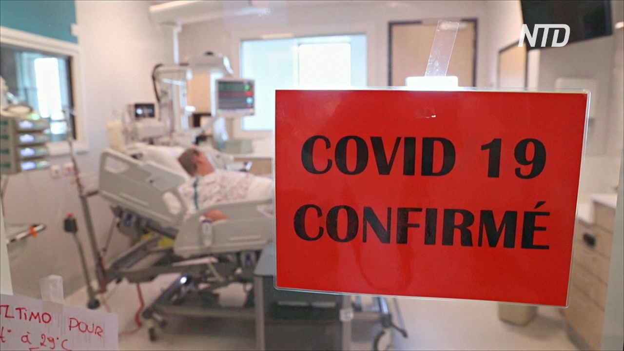 В мире за сутки выявили более 63 тысяч новых случаев COVID-19