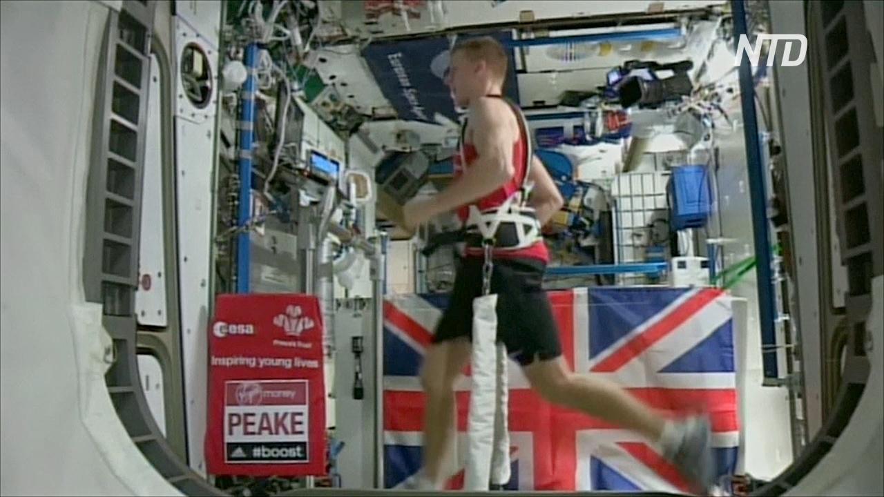 Уроки из космоса: астронавты делятся секретами жизни в изоляции
