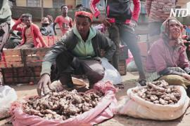 Эфиопы скупают лимоны, имбирь и чеснок, чтобы защититься от COVID-19