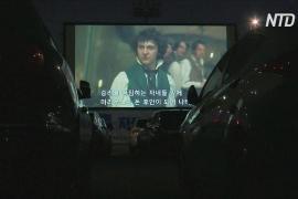 Кинозал под открытым небом: карантин не мешает южнокорейцам развлекаться