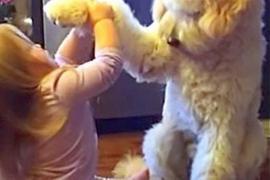 Как трёхлетняя девочка дрессирует собаку. Весёлое видео