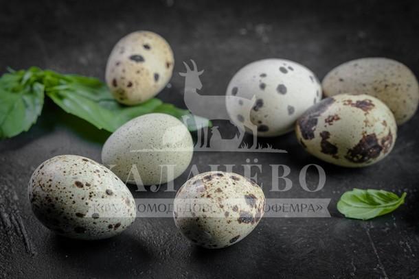 YAjtsa perepelki - Деревенские продукты – для здорового питания