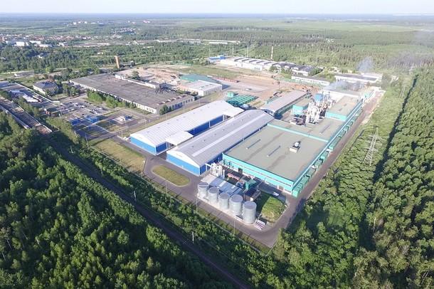 Экологичная деревообработка в России возможна