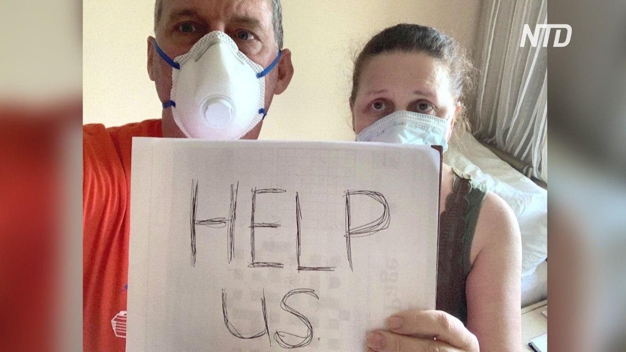 Канадская пара взывает о помощи на круизном лайнере, где обнаружили коронавирус