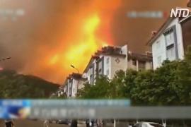 19 человек погибли в Китае при тушении лесного пожара