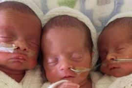 Как мама различает тройняшек, которые все на одно лицо