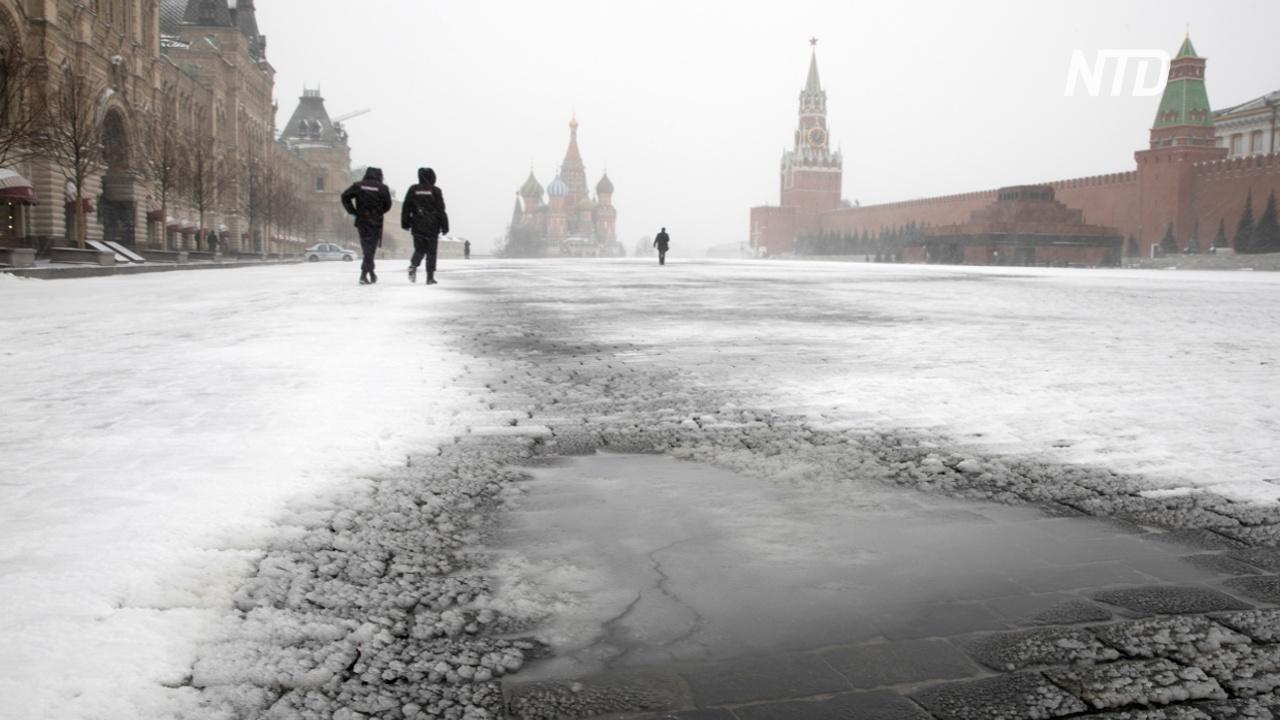 В России нарушение карантина будут карать штрафами и тюрьмой до семи лет