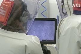 В Австралии начались лабораторные испытания потенциальных вакцин от COVID-19