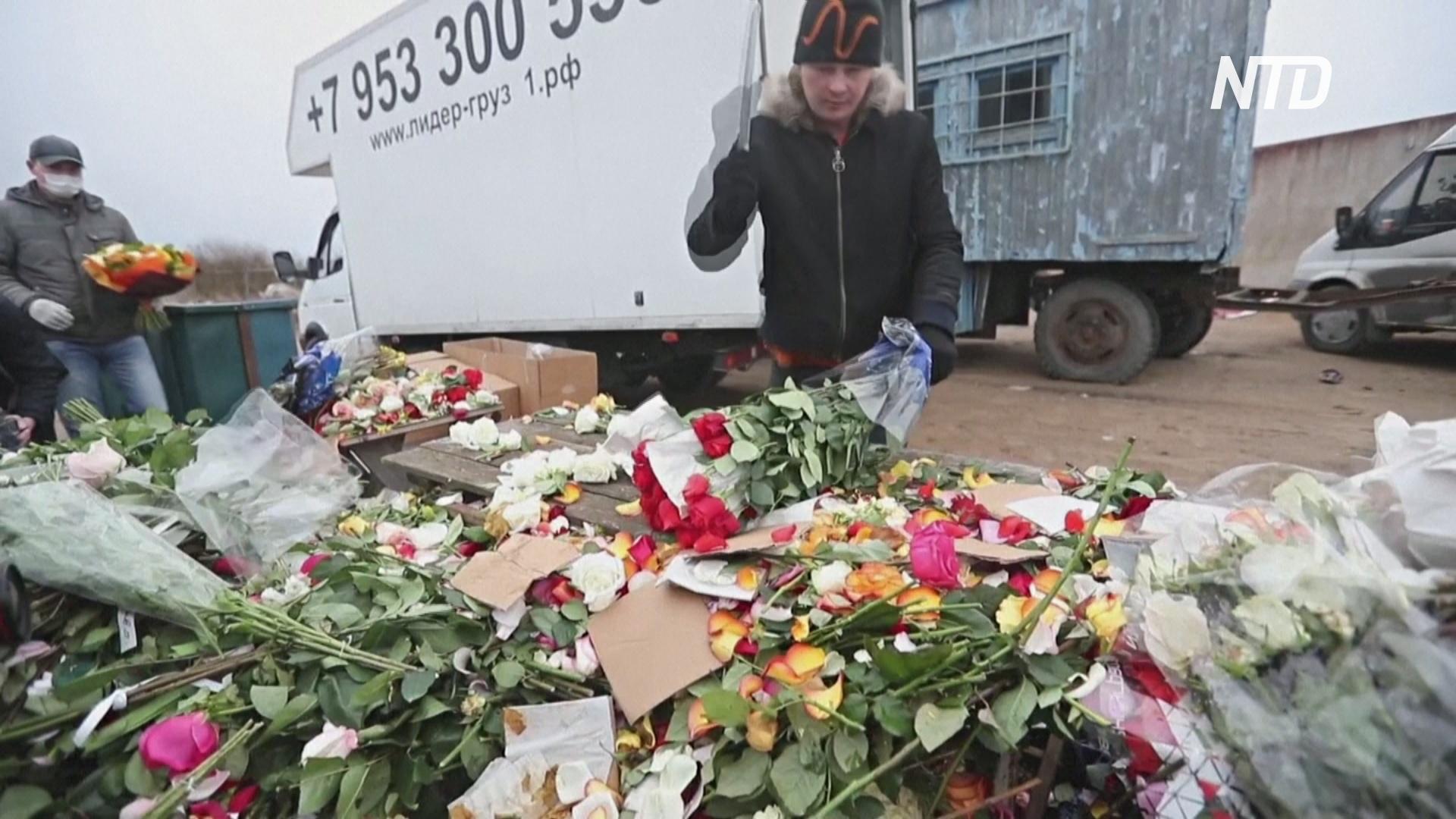 Российские производители цветов уничтожают миллионы роз