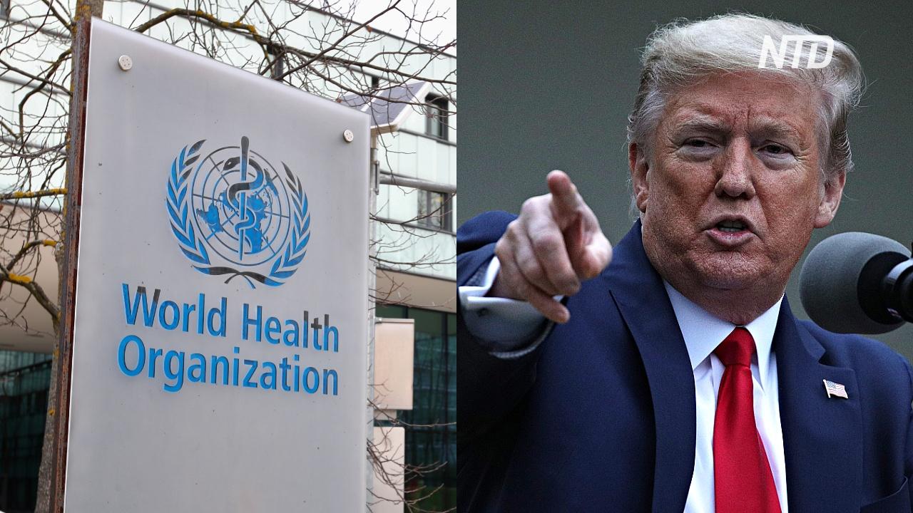ВОЗ лишилась денег США: Дональд Трамп требует расследования