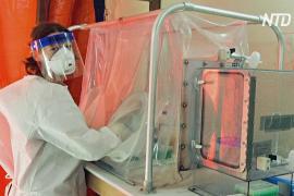 Препарат ремдесивир эффективно сдерживает симптомы коронавируса у макак-резусов