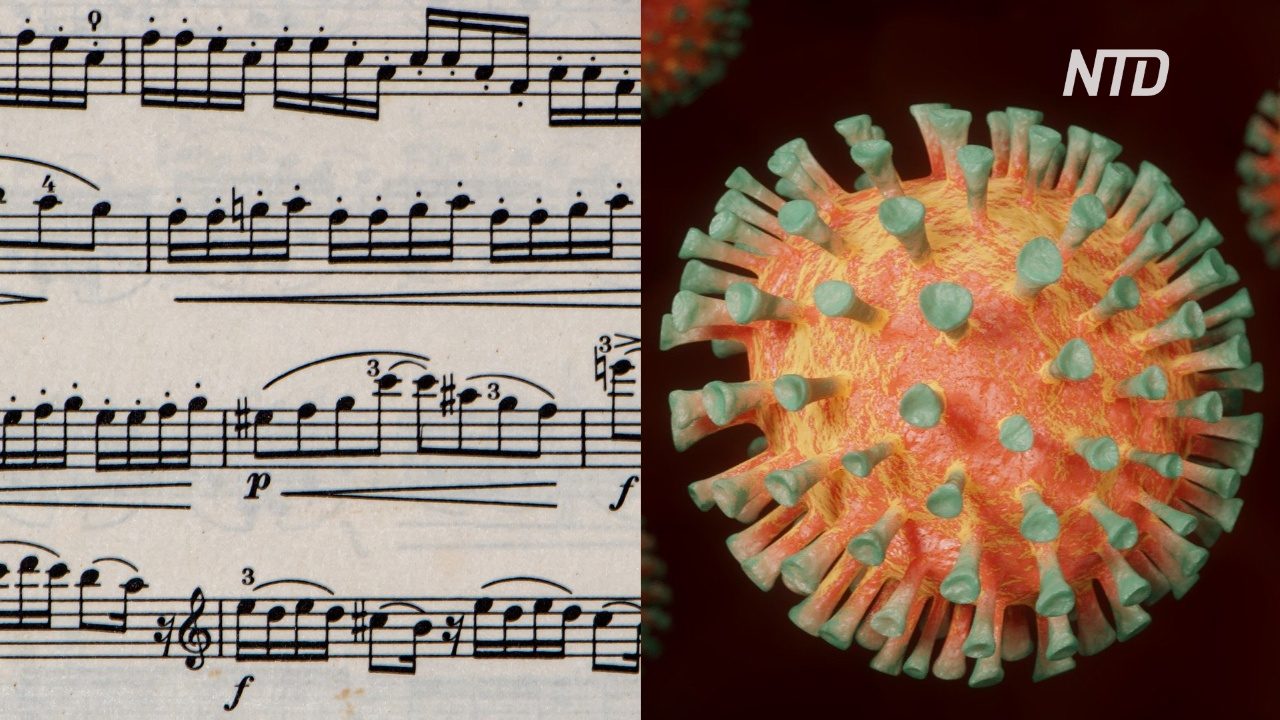 Как музыка поможет противостоять новому коронавирусу