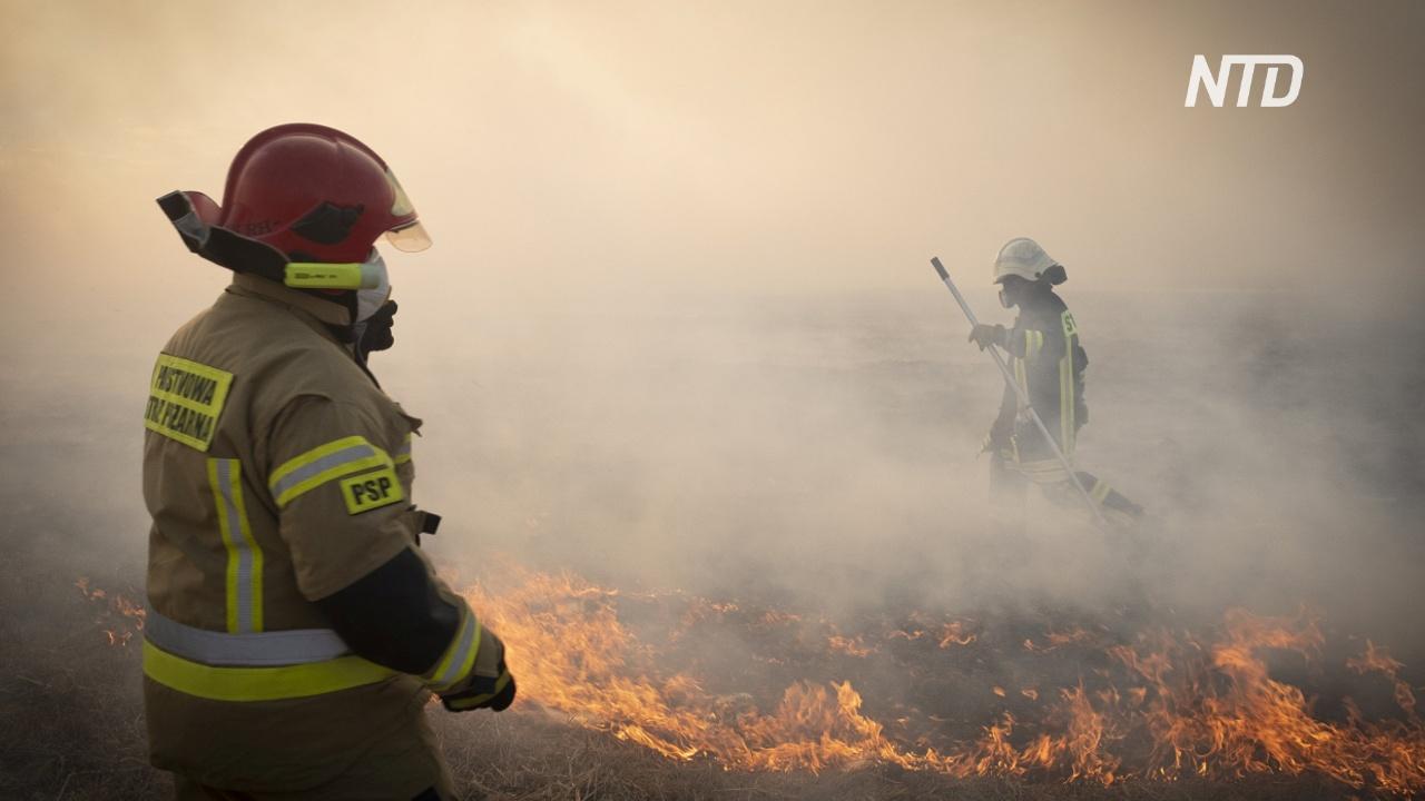 В Польше горит крупнейший заповедник