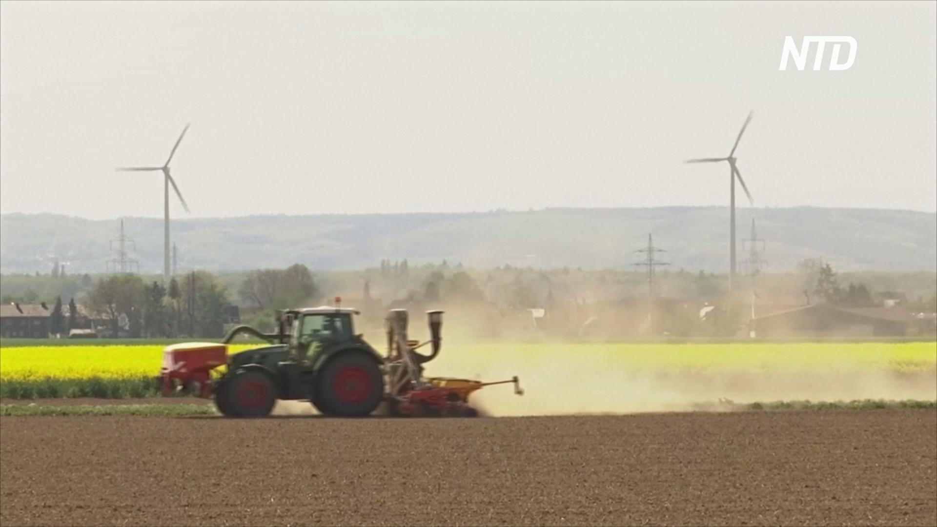 Засуха угрожает сельскому хозяйству Германии