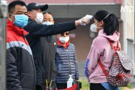 Школьники в Пекине и Шанхае возвращаются за парты, несмотря на эпидемию