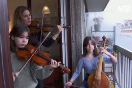 Антидепрессант на карантине: парижанка играет на скрипке для соседей