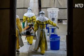 Эбола вернулась в ДР Конго