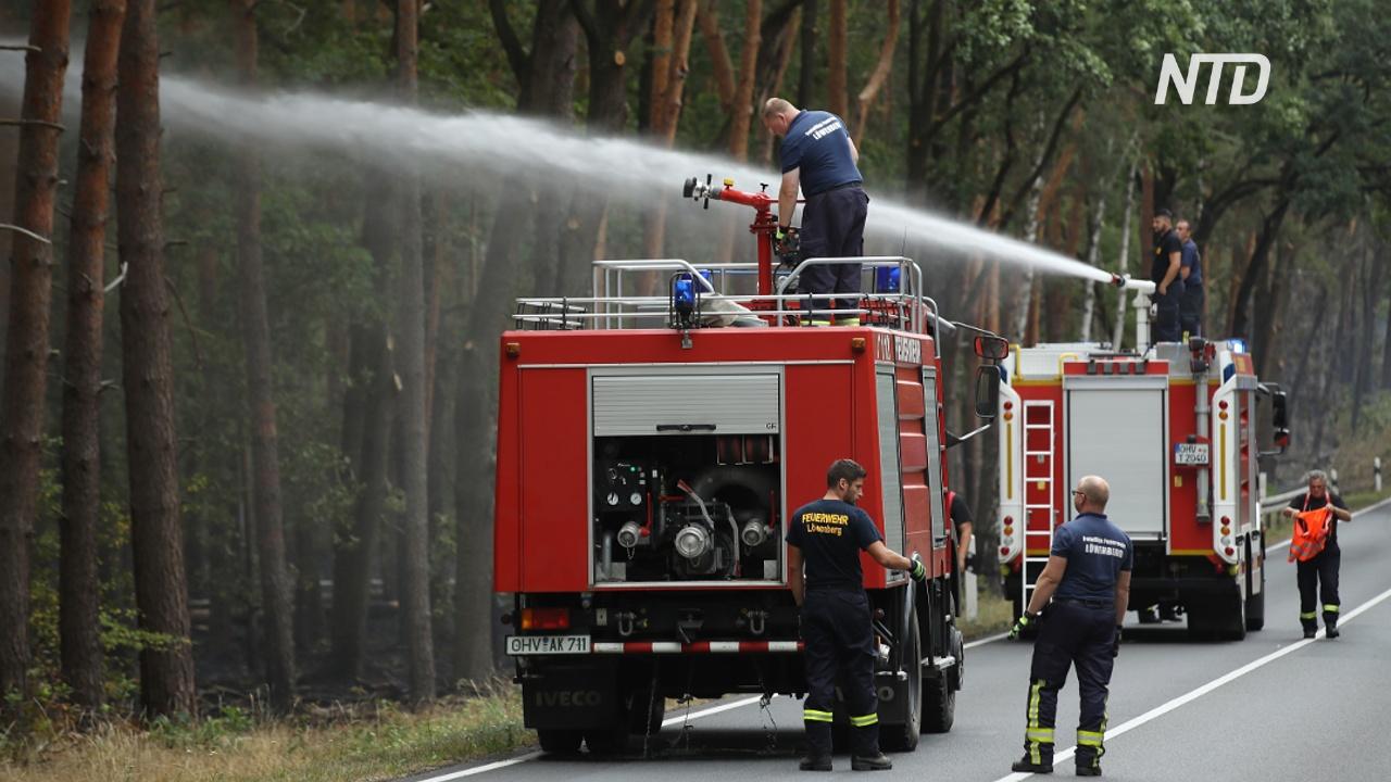 Нет дождей: в Германии начались лесные пожары