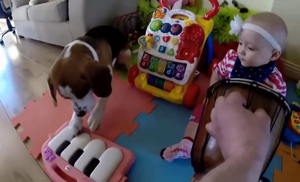 Novyj risunok 6 3 - Что умеет делать пёс, который стал няней для младенца. Замечательное видео
