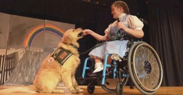 Девушка и собака неожиданно получают главные роли в спектакле