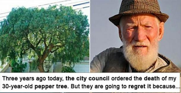 Как дедушка отомстил за любимое срубленное дерево