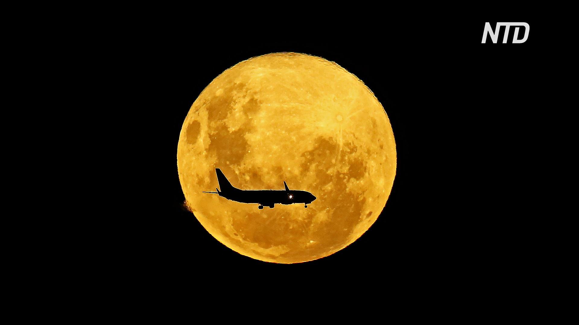 «Цветочная Луна»: каким было суперлуние в разных частях мира