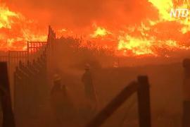 Калифорния готовится лучше противостоять лесным пожарам, хотя бюджет пошатнулся