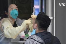 Заражения коронавирусом в ночных клубах: Южная Корея опасается новой вспышки