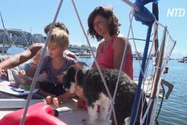 Аргентинская семья самоизолировалась на яхте у берегов Бразилии