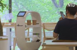 В южнокорейском кафе роботы заменили обслуживающий персонал