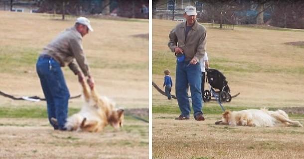 Что придумал мужчина, чтобы вытащить непослушную собаку из парка