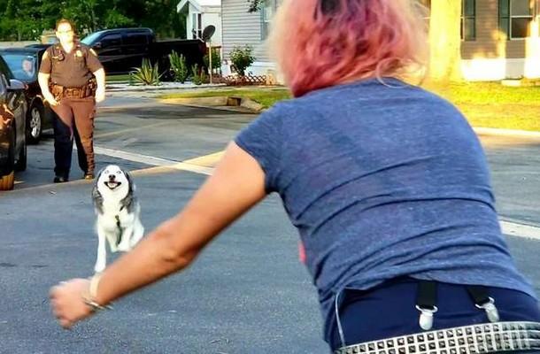Женщина наняла детектива, чтобы найти собаку