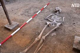 Мятежный правитель: в Испании, возможно, нашли могилу ирландского короля
