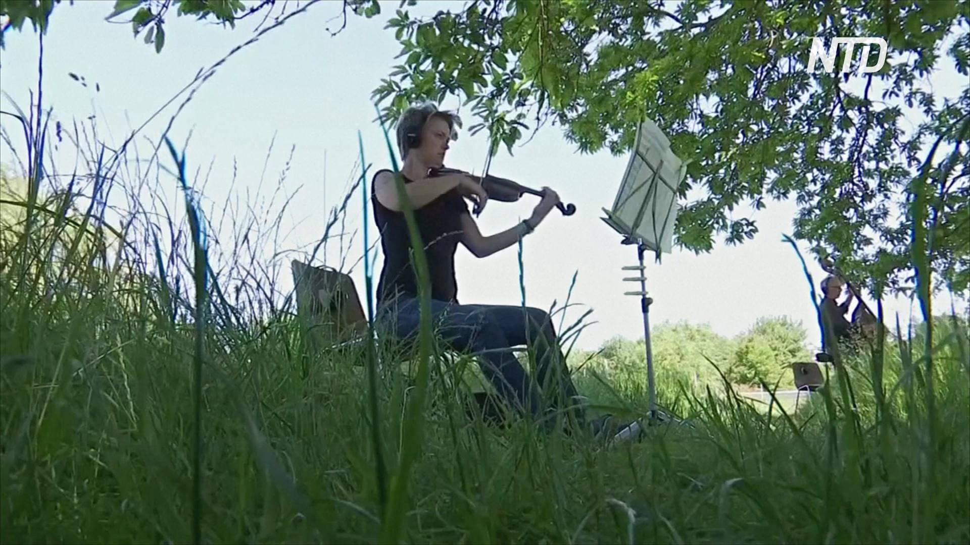 Деревня, которую хотят снести, защищается с помощью симфонии Бетховена