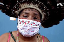 В Бразилии растёт число аборигенов, умерших от COVID-19